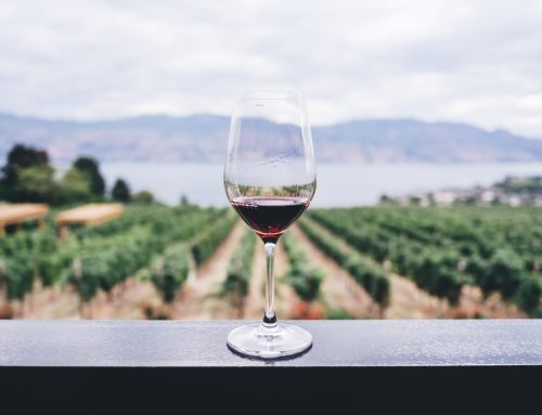Cabernet Sauvignon & liknande röda viner